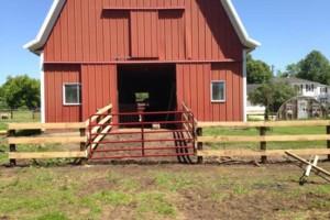 Photo #9: Custom Fencing (farm, boundary fencing)