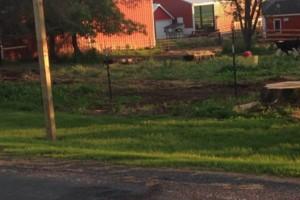 Photo #7: Custom Fencing (farm, boundary fencing)