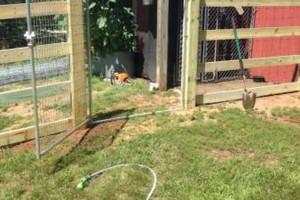 Photo #3: Custom Fencing (farm, boundary fencing)