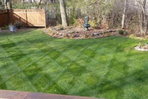 Photo #7: MOENS MOWING & LANDSCAPING. Spring Clean-up Special!