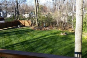Photo #6: MOENS MOWING & LANDSCAPING. Spring Clean-up Special!