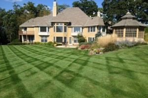 Photo #5: MOENS MOWING & LANDSCAPING. Spring Clean-up Special!