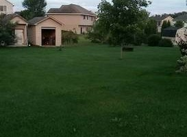 Photo #1: Pristine Lawns. Offering Lawn Service at a Great Price!