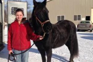 Photo #1: Pet Sitting / Horse Farm Chores