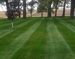 Photo #1: NIEBUR LAWN CARE