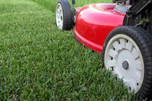 Photo #3: Lawn Care South Metro
