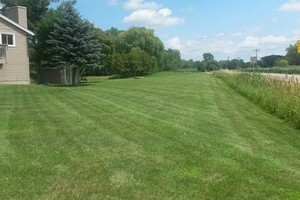 Photo #11: Little Buddies Services - Lawn Mowing & Landscaping Service