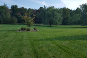 Photo #10: Little Buddies Services - Lawn Mowing & Landscaping Service