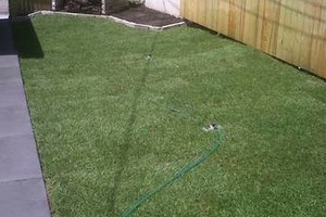 Photo #4: Little Buddies Services - Lawn Mowing & Landscaping Service