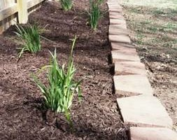 Photo #5: Anthony landscaping! Special on mulching in April!