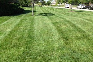 Photo #2: Commercial Lawn Service - Mowing, Edging, Trimming