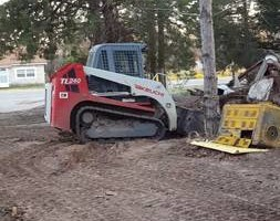 Photo #4: Dirt work, tree removal, pasture clearing