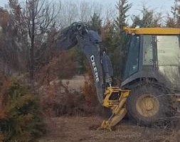 Photo #2: Dirt work, tree removal, pasture clearing