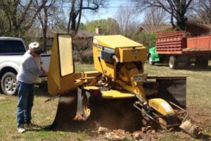 Photo #1: BALL'S STUMP GRINDING