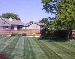 Photo #3: Spring clean up... any landscaping job