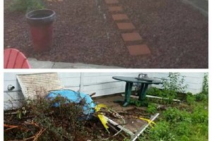 Photo #2: Lawn Care - Tree Trimming - Fence Repair - Property Maintenance - Mowing