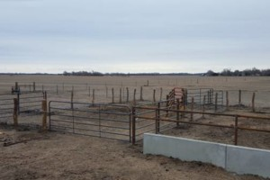Photo #1: AG Fence Services / Pasture-clearing/ Hedge Posts