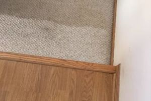 Photo #1: Dirty Carpets? Get the carpet for one level of your home!