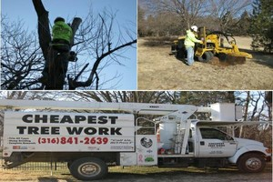 Photo #1: Cheapest Tree Work - Tree Removal or Stump Grinding