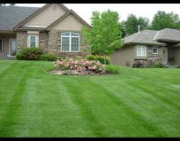 Photo #2: Pro lawn care & mowing