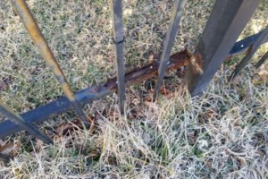 Photo #6: Gary Walker LLC. Wrought iron fence restoration