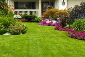 Photo #1: Spring Clean Yard Service. Earlybird Specials!