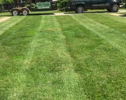 Photo #3: Laverentz lawn & landscape - Mowing and landscape work