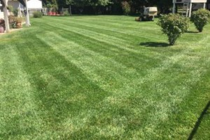 Photo #1: Laverentz lawn & landscape - Mowing and landscape work