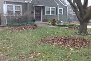 Photo #4: Leaves Removal Specialists- FREE ESTIMATES
