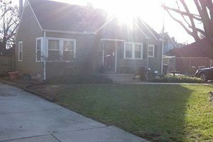 Photo #1: Leaves Removal Specialists- FREE ESTIMATES