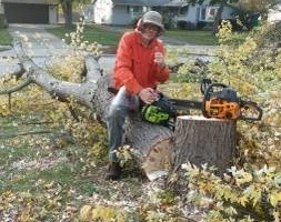 Photo #2: LOW COST JAMES LAWN & PROPERTY CARE / TREE SERVICE. $20 - $30 PER VISIT