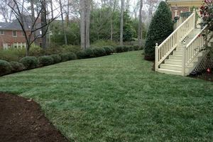 Photo #4: Weekly Lawn Care - mowing, clean edges, and all unsightly grass