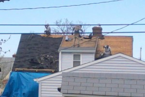 Photo #1: Roof Leaks/Gutters - repairs, cleaning. New Pics