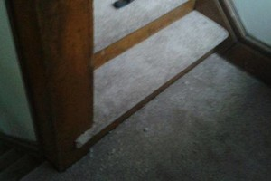 Photo #5: Carpet installations/restretching - $4.00 a yard