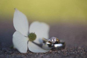 Photo #17: Kelly Pifer Photography. Custom Wedding Photography Packages - Digital files always included!