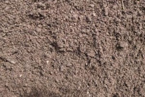 Photo #5: Source One Landscape Supply. MULCH TOPSOIL STONE