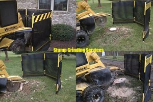 Photo #2: Stump Grinding Services. Affordable and Professional
