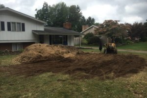 Photo #2: Affordable Stump Grinding by Bryan for $15/piece