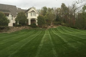 Photo #19: Omar's Worldscapes Landscaping and Tree Services
