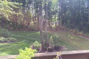 Photo #16: Omar's Worldscapes Landscaping and Tree Services