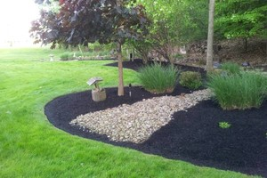 Photo #11: Omar's Worldscapes Landscaping and Tree Services