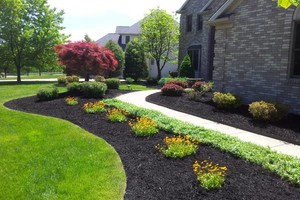 Photo #10: Omar's Worldscapes Landscaping and Tree Services