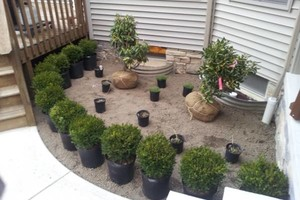 Photo #2: Omar's Worldscapes Landscaping and Tree Services