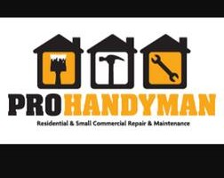 Photo #1: ProHandyman Adam's Gutter cleaning and Handyman Services!
