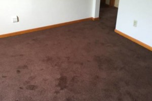 Photo #3: Carpet installation! Carpet, ceramic, hard wood, laminate, vinyl