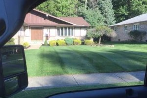 Photo #1: Shima's Landscaping services. Experienced and Insured