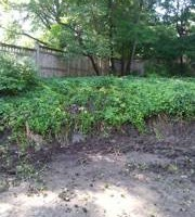 Photo #1: Cooper Group Landscaping