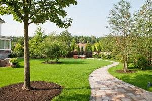 Photo #3: Spring clean up! Edging trimming, grass cutting by All weather landscape