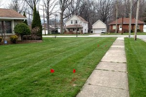Photo #6: Need your lawn mowed? Feel free to contact Chris!