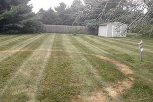 Photo #4: Need your lawn mowed? Feel free to contact Chris!